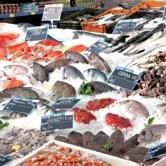Prve pošiljke ribe u EU 29. decembra