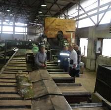 Pokrenuta proizvodnja u Seha Sani