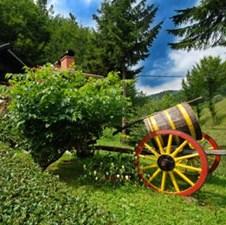 U Kotor Varošu i Čelincu u proizvodnji hrane i razvoju turizma vide svoju šansu