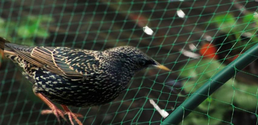 Riješite se problema koje vam uzrokuju ptice, šišmiši ili glodari!