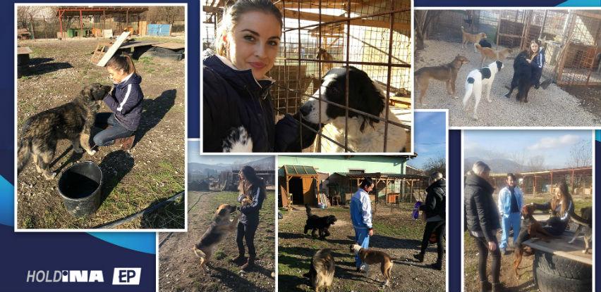 Volonteri kompanije Holdina radili na pomoći azilu za pse u Gladnom Polju