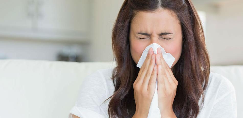INZ - Nadzor nad gripom u ZDK