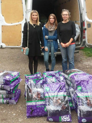 Konzum osigurao hranu za napuštene pse i mačke