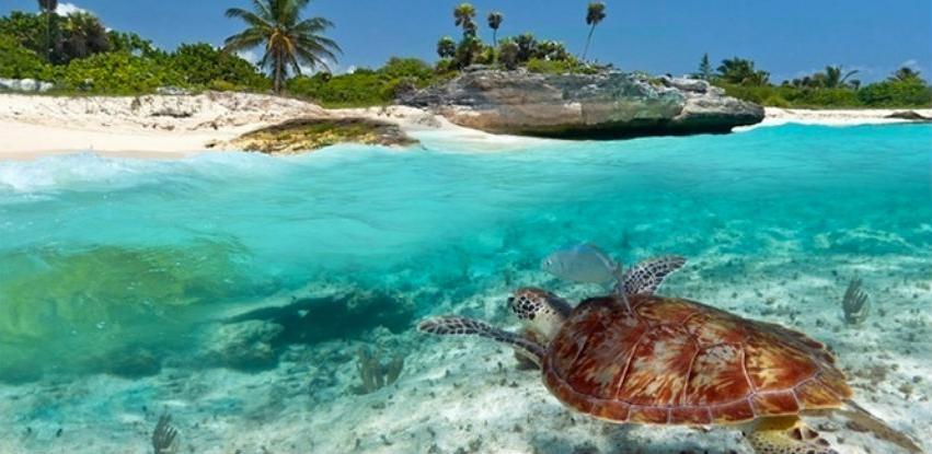 Zanzibar: Dragulj Indijskog okeana
