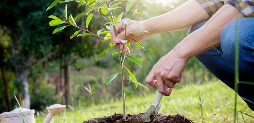 Čuvajmo našu prirodu!