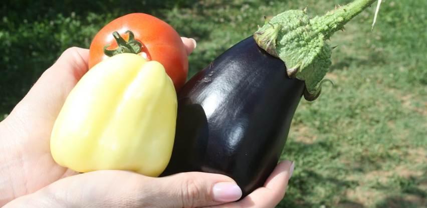 Zdravo, domaće i ukusno povrće u Centru Fenix po povoljnim cijenama