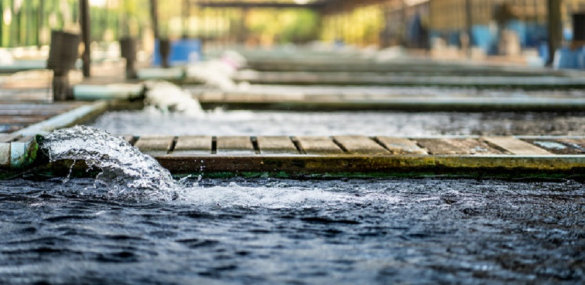 Regeneracija Velika Kladuša: Tretman voda