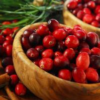 Brusnica - Jedna od najzdravijih namirnica svijeta