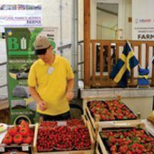 BIOS se predstavio na FARMA danu u Švedskoj ambasadi u BiH