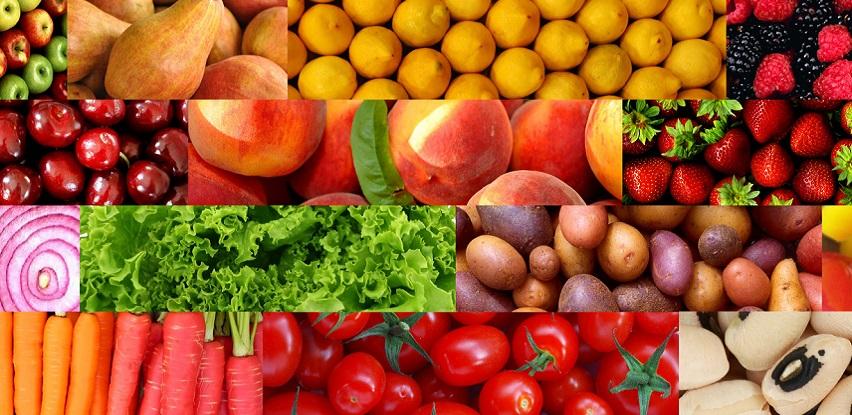 Otkrijte na vrijeme bolesti biljnih kultura uz ALEM Sistem