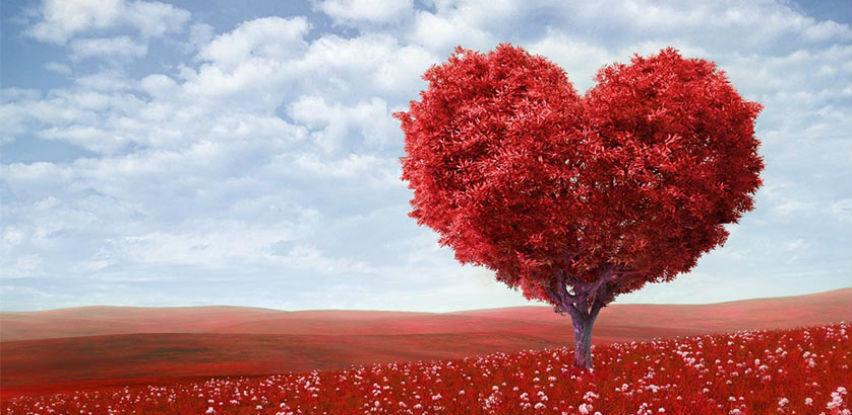 Wellness terapeut na kućnoj adresi za Valentinovo