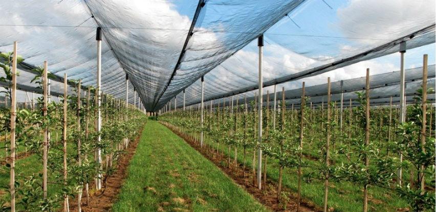 Protivgradne mreže daju pouzdanost i bolji kvalitet ploda