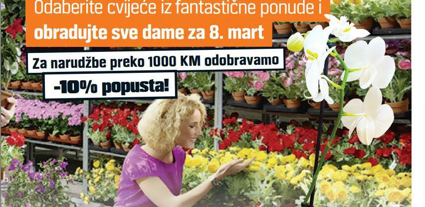 OBI je pripremio specijalnu ponudu cvijeća za 8. mart