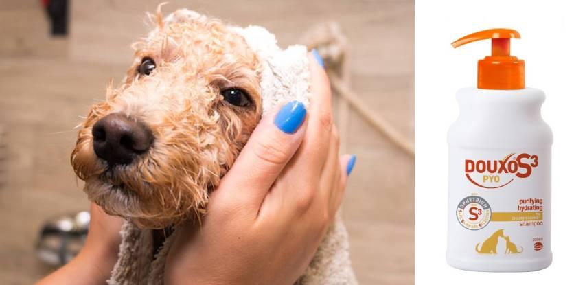 Mim Coop akcija: Duoxo S3 Pyo šampona za pse i mačke