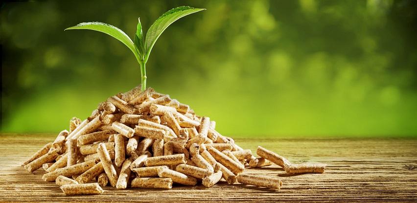 bioConcept bavi se proizvodnjom drvenog peleta fokusiran na domaće tržište